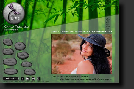 Tru-Life website design - web image 1 - by Sedona AZ Website Design Company IIIXIII
